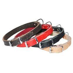 Dingo Obroża skórzana podszyta filcem 1,8x45cm czerwona