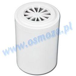 Wkład do filtra prysznicowego Silver
