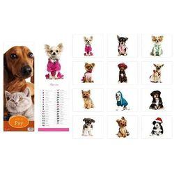 Kalendarz 2016 13 planszowy paskowy Psy i kot
