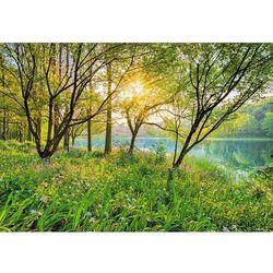 Fototapeta KOMAR 8-524 National Geographic Spring Lake