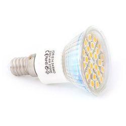 LEDtechnics JDR E14 24 SMD 5050 CIEPŁY | 01271WW