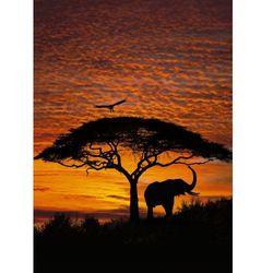 Fototapeta KOMAR 4-501 African Sunset National Geographic