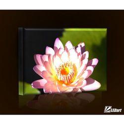Lilia wodna BASIC Obraz LED prostokątny