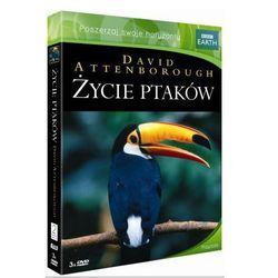 BBC - Życie ptaków (Box 3 DVD)