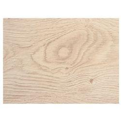 Panele podłogowe laminowane Dąb Labrador Kronopol, 10 mm AC5