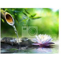 Fototapeta ogród zen kamieniami masażu i lilii wodnej