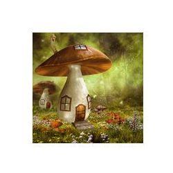 Foto naklejka samoprzylepna 100 x 100 cm - Kolorowy domek z grzyba na łące