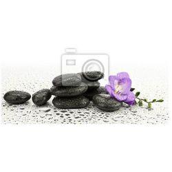 Naklejka Frezja na kamieniach zrób Masażu