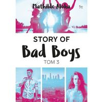 Story of Bad Boys 3