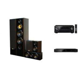 PIONEER VSX-430 + BDP-100 + TAGA TAV-606 v3 - Kino domowe - Autoryzowany sprzedawca