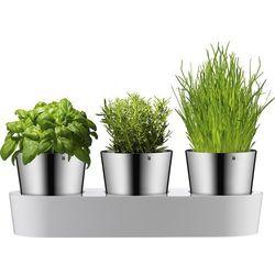 Doniczki na zioła w podstawce Gourmet WMF