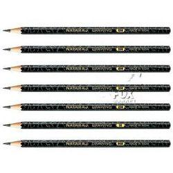 Zestaw ołówków NATARAJ ołówek 12 sztuk 6H-6B