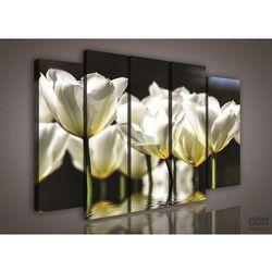 Obraz Białe Tulipany PS585S12