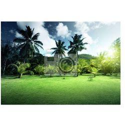 Plakat pole trawy i palm kokosowych na wyspie Praslin, Seszele