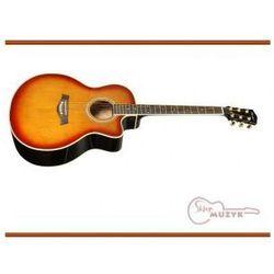 Gitara akustyczna T.Burton FORESTRIVER-J-C-BS
