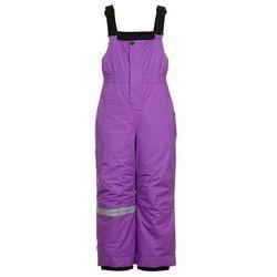 Icepeak IVORY Spodnie narciarskie amethyst
