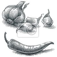 Plakat garlic and chili pepper composition. spice. hand drawn engraving style illustrations.