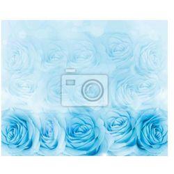 Fototapeta Niebieskie róże