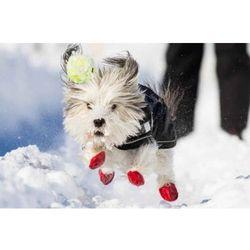 Buty z naturalnej gumy dla psów XL