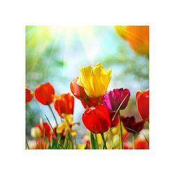 Wiosenne kwiaty - reprodukcja