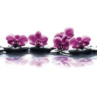 Dekor Orchidea Bianca 30x60 cm Cer-Rol
