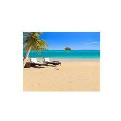 Foto naklejka samoprzylepna 100 x 100 cm - Tropikalna plaża z palmy kokosowej