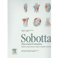 Atlas anatomii człowieka Sobotta. Tablice anatomiczne mięśni, stawów i nerwów (opr. miękka)
