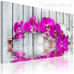 Obraz - harmonia: orchidea - tryptyk