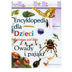 Owady i pająki Encyklopedia dla dzieci