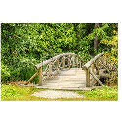 Fototapeta Drewniany most w parku