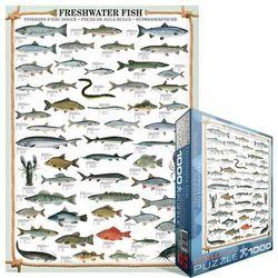 29-000312 Puzzle Ryby słodkowodne