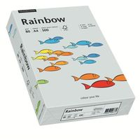 Papier xero A4 kolor RAINBOW past. - szary 96