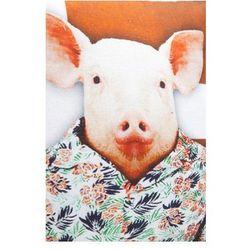Kare design :: Poduszka International Animals 40 x 40 Świnka - świnka
