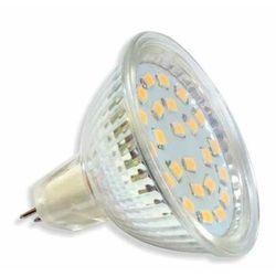 Żarówka 21 LED SMD2835 5W MR16 12V