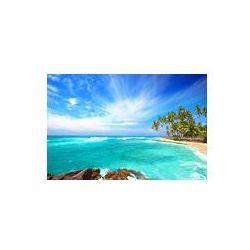 Foto naklejka samoprzylepna 100 x 100 cm - Side Beach Sri Lance z palmami kokosowymi